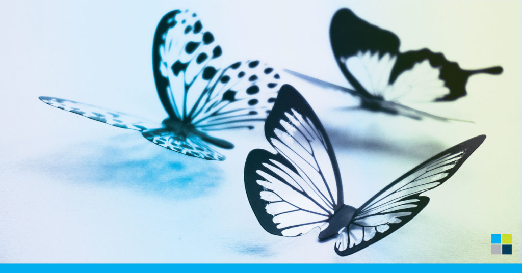 Butterflies and clients that transformed during 2020